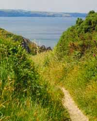 Path to Tregardock Beach